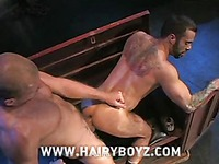Gay man in shades Scott Tanner fucks hairy ass of Steve Cruz doggy style in the dark